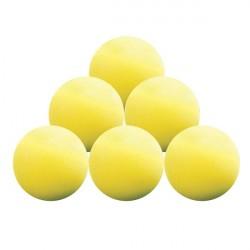 Balles Entrainement Longridge x6