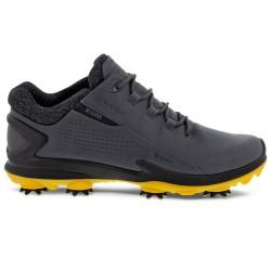 Chaussure Ecco Biom G3 Gore-Tex Gris Fonce
