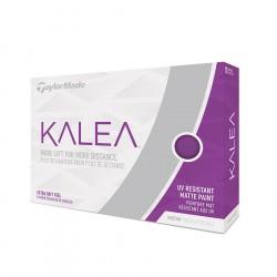 Kalea 2019 X12